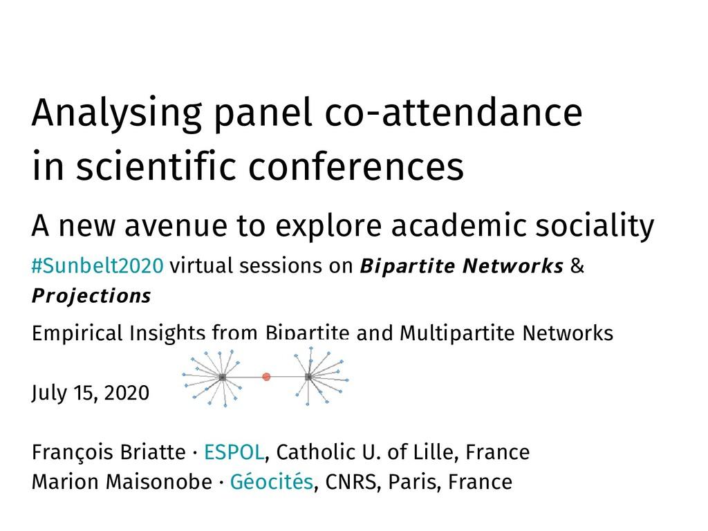 Analysing panel co-attendance in scientific con...