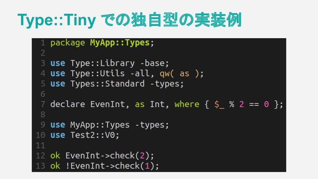 Type::Tiny での独自型の実装例