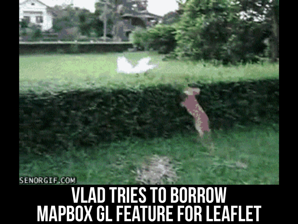 vlad tries to borrow Mapbox GL feature for leaf...