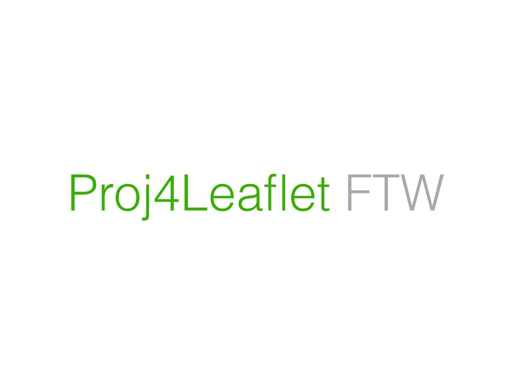 Proj4Leaflet FTW