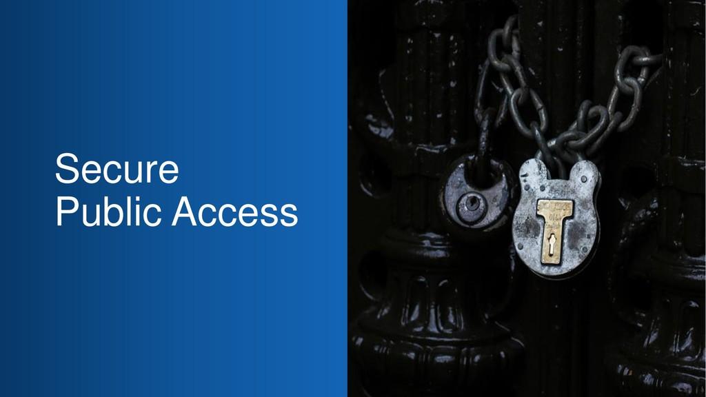 Secure Public Access