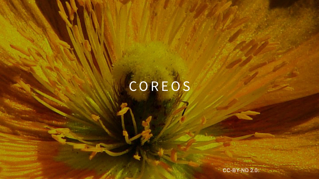 CO R E O S CC-BY-ND 2.0: