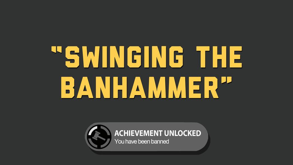 """""""Swinging the BanHammer"""""""