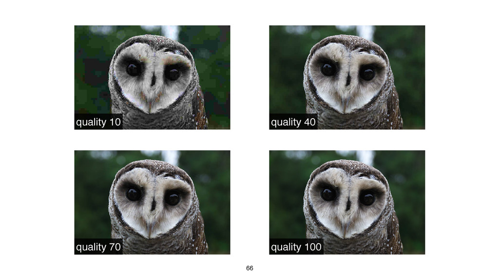 66 quality 10 quality 40 quality 70 quality 100