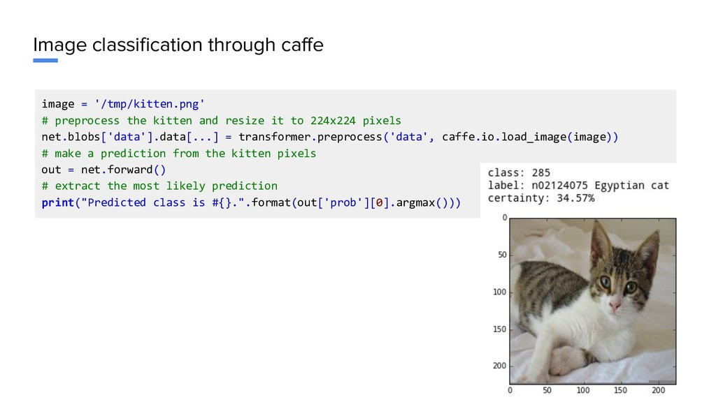 Image classification through caffe image = '/tm...