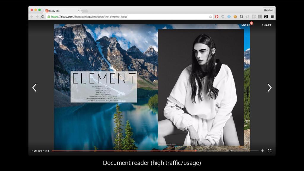 Document reader (high traffic/usage)