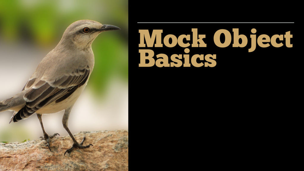 Mock Object Basics