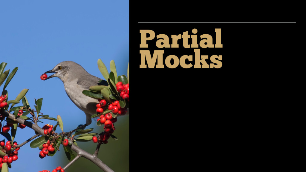 Partial Mocks