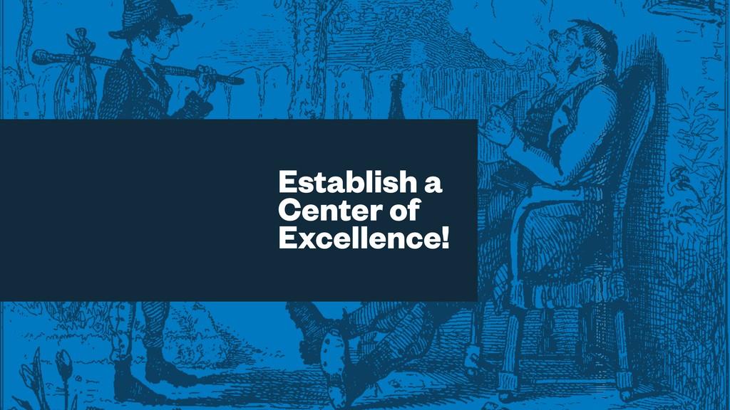 Establish a Center of Excellence!