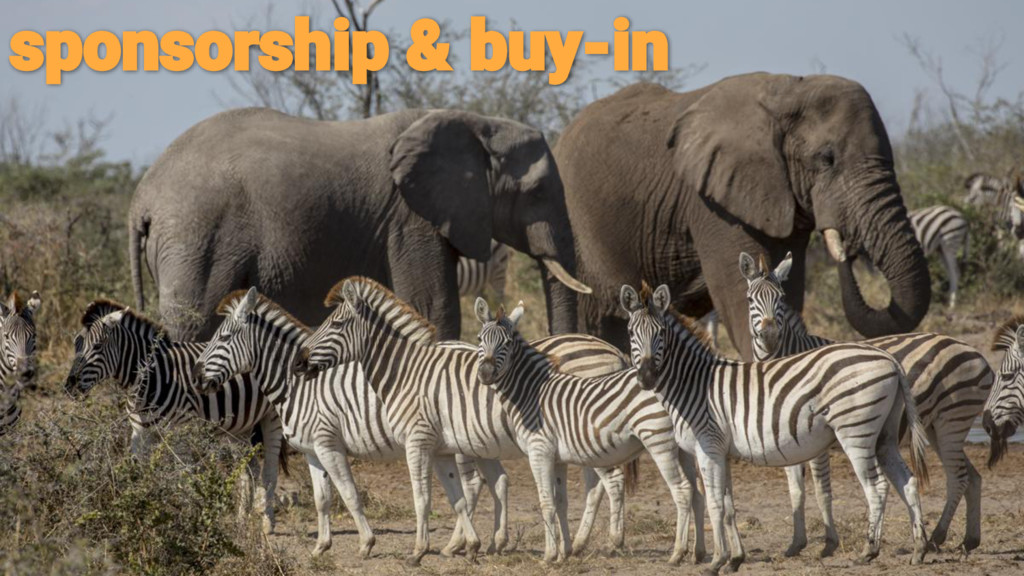 sponsorship & buy-in