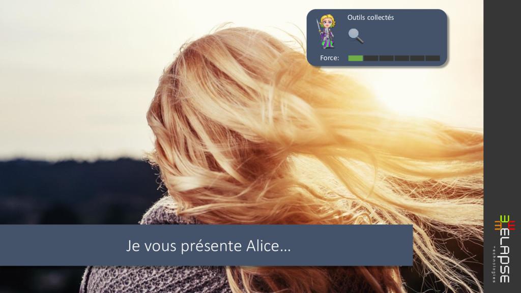 Je vous présente Alice… Force: Outils collectés
