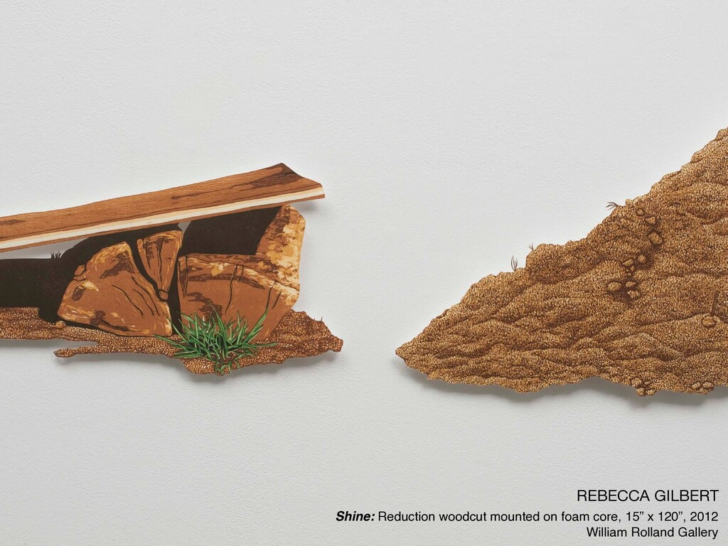 REBECCA GILBERT  Shine: Reduction woodcut mount...
