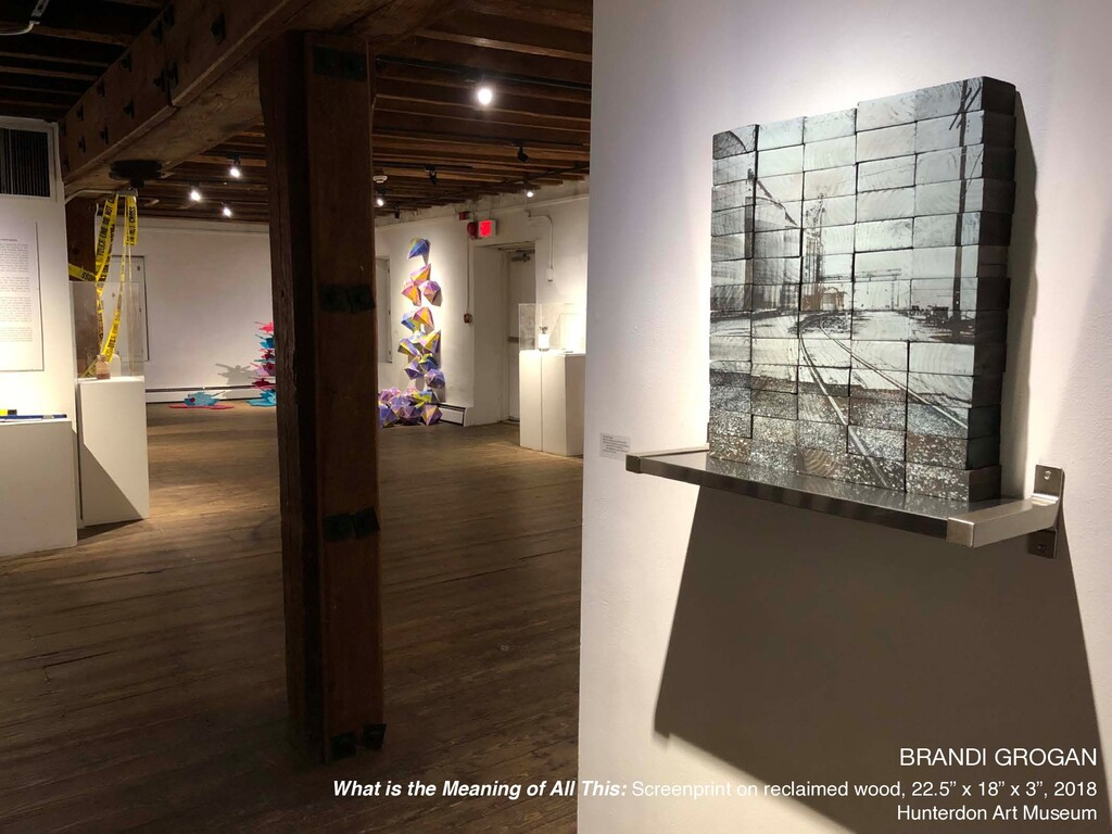 BRANDI GROGAN  What is the Meaning of All This:...