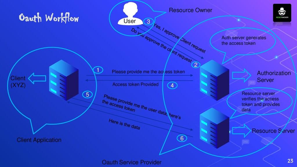 23 Authorization Server Client (XYZ) User Pleas...