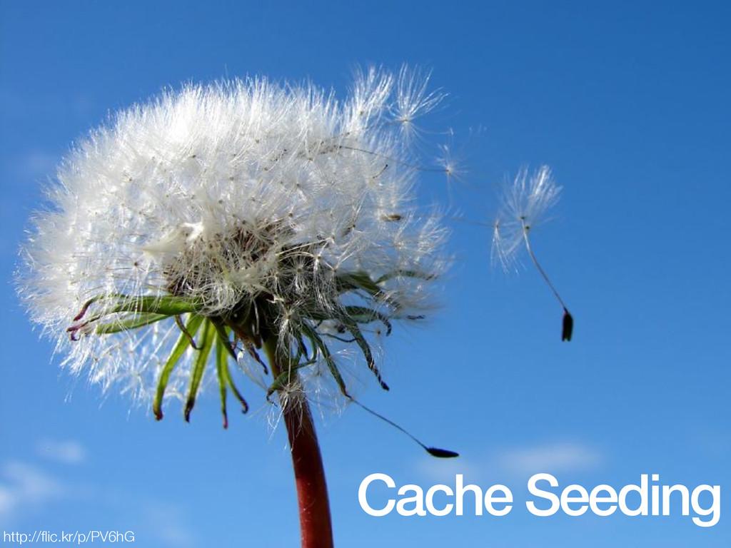 Cache Seeding http://flic.kr/p/PV6hG