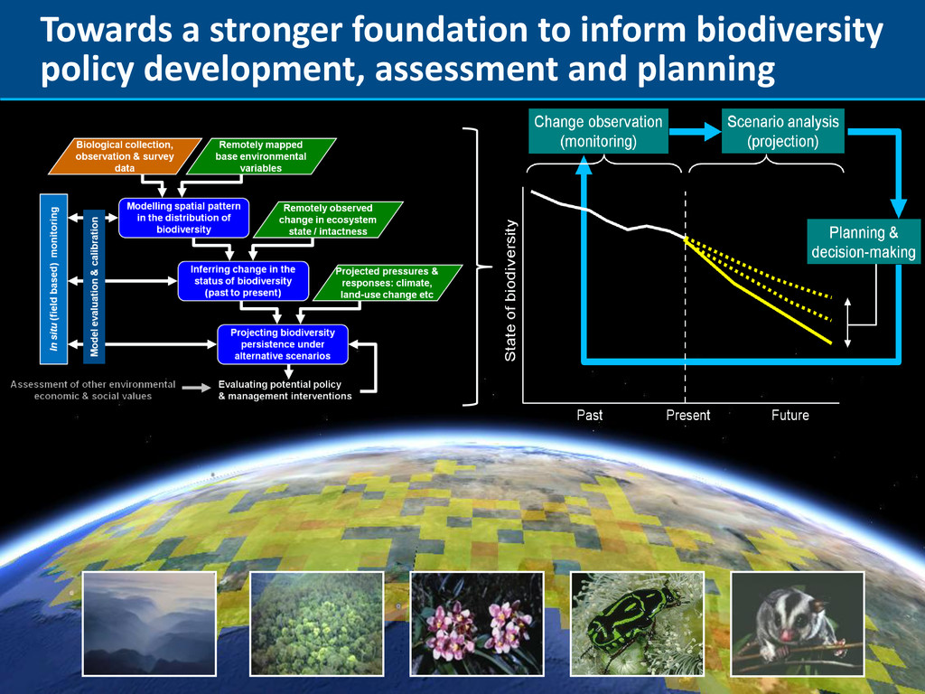 Towards a stronger foundation to inform biodive...