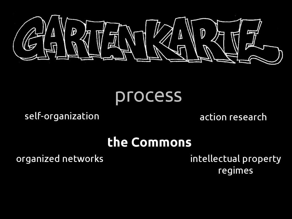process self-organization organized networks ac...