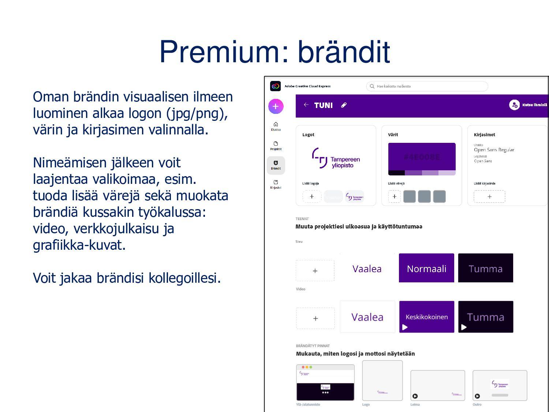 Valitse teema ja koko • TEEMA: valitse videosi ...