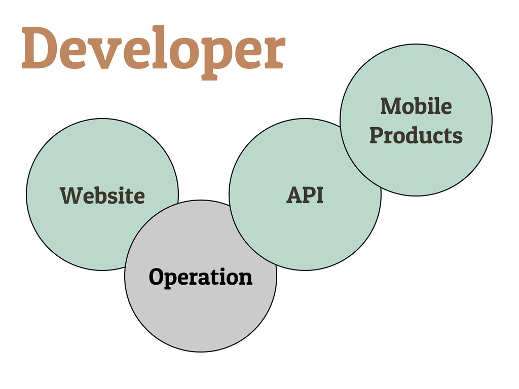 Website Operation API Mobile Products Developer