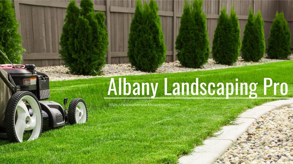 Albany Landscaping Pro https://www.albanylandsc...