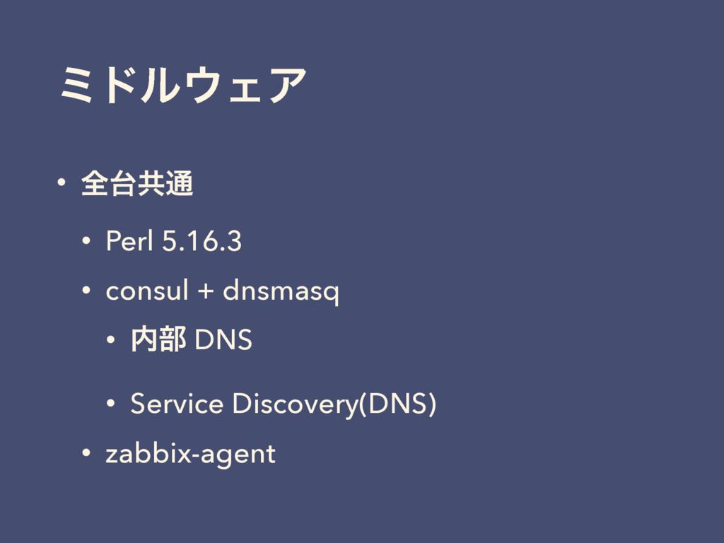ϛυϧΣΞ • શڞ௨ • Perl 5.16.3 • consul + dnsmasq ...