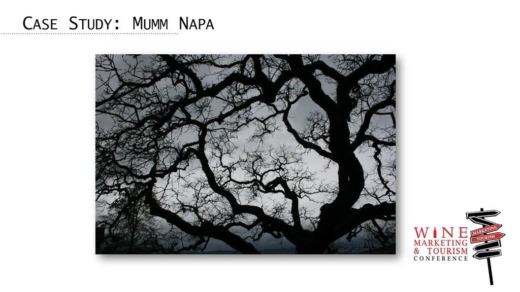 CASE STUDY: MUMM NAPA