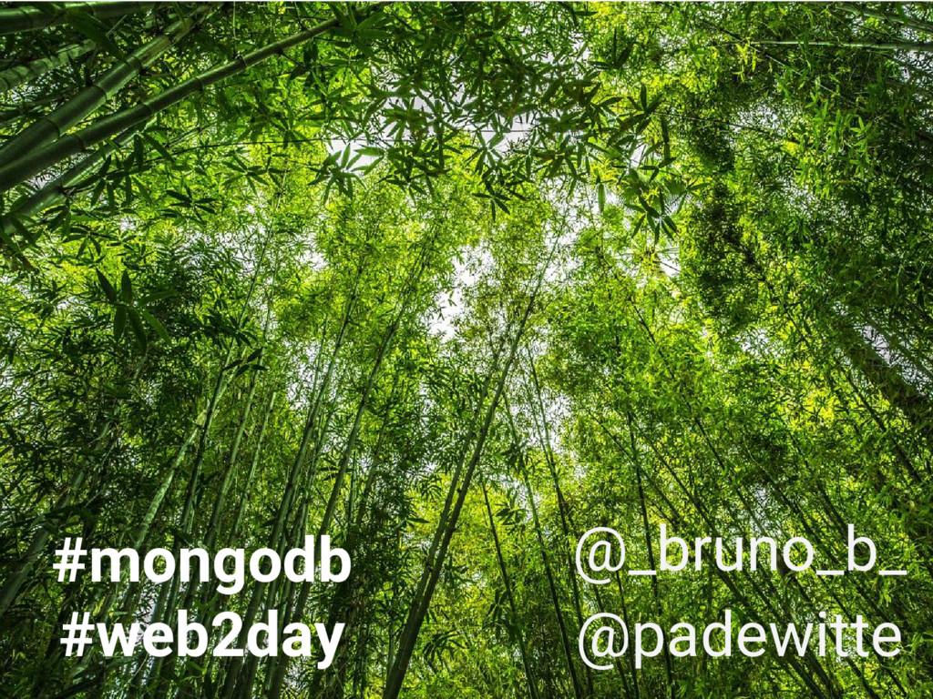 #mongodb #web2day @_bruno_b_ @padewitte