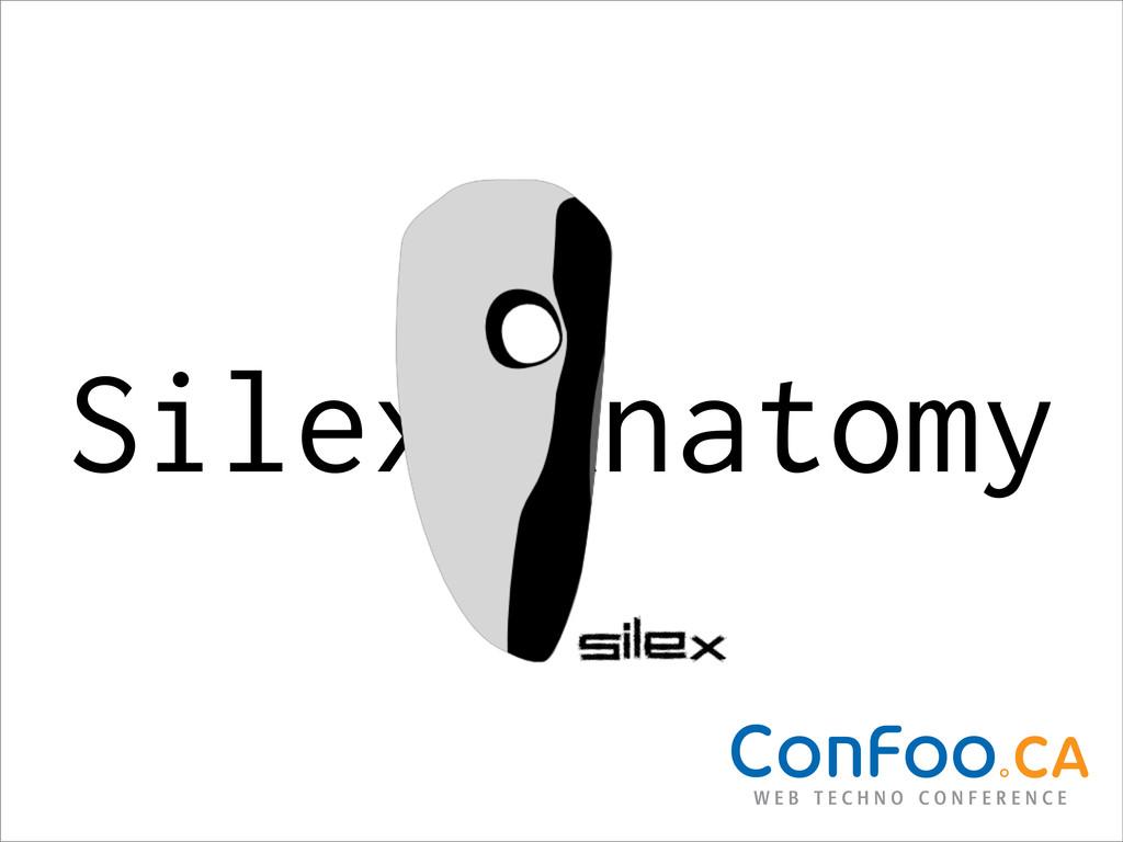 Silex Anatomy