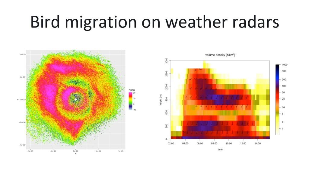 Bird migration on weather radars
