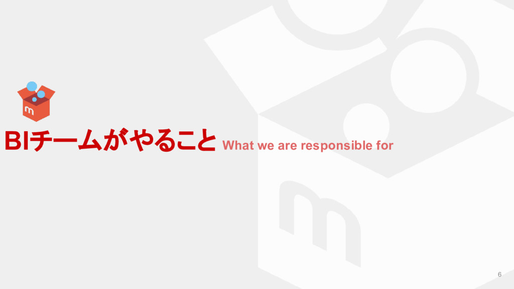 6 BIチームがやること What we are responsible for