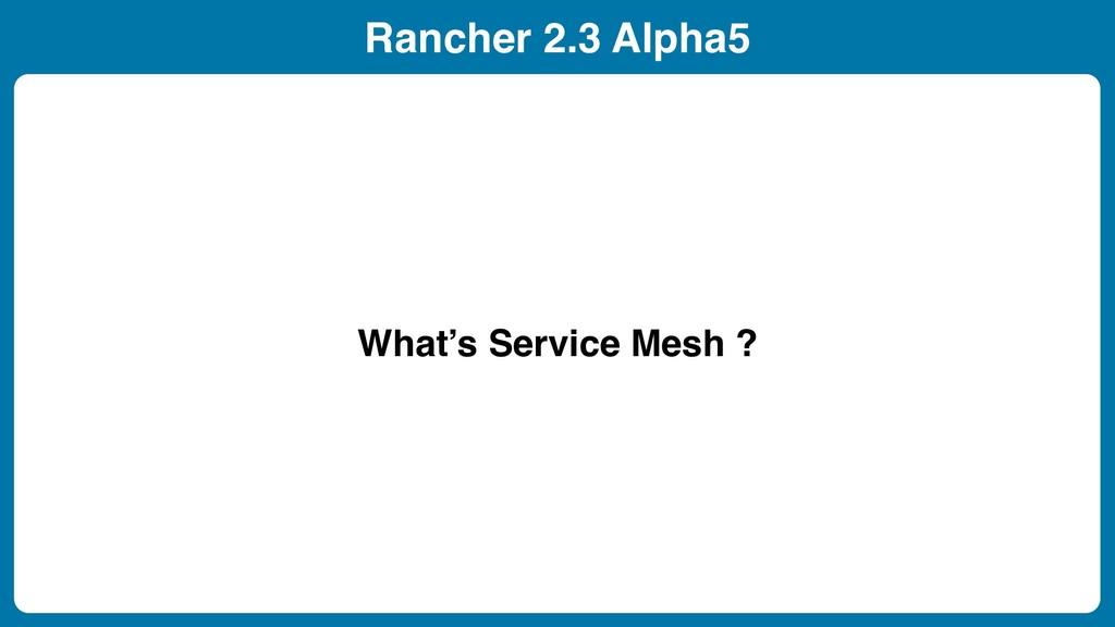 Rancher 2.3 Alpha5 What's Service Mesh ?