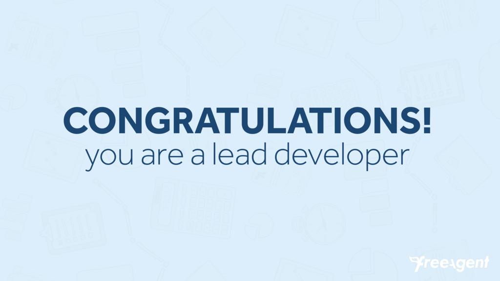 CONGRATULATIONS! you are a lead developer