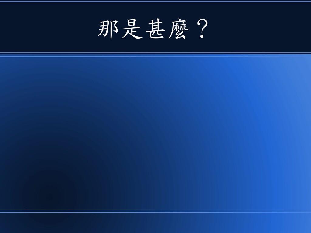 那是甚麼?