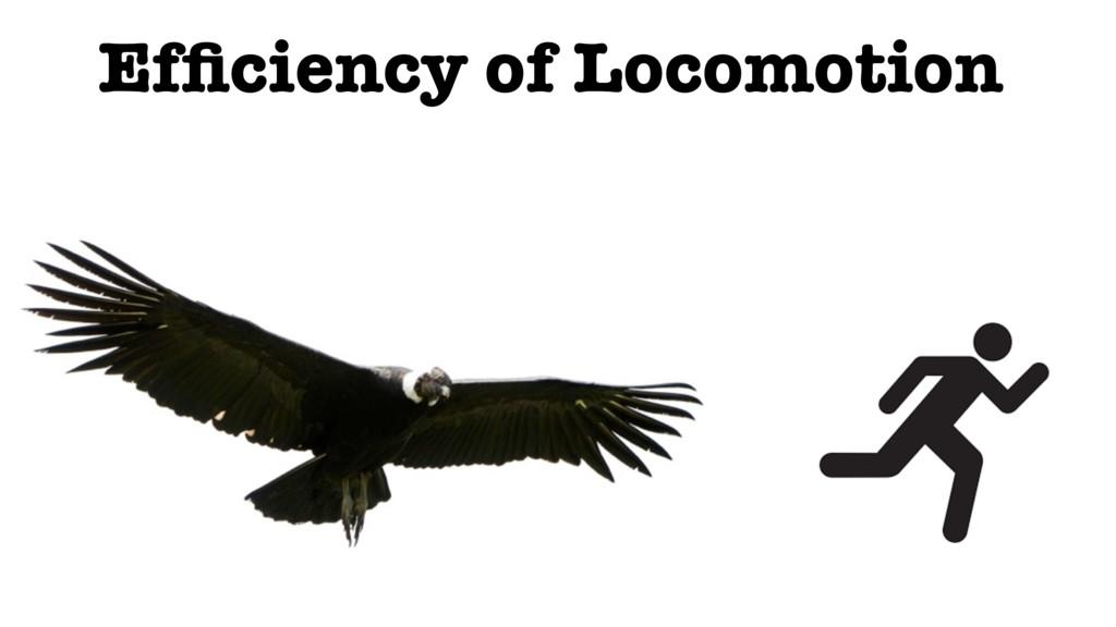 Efficiency of Locomotion