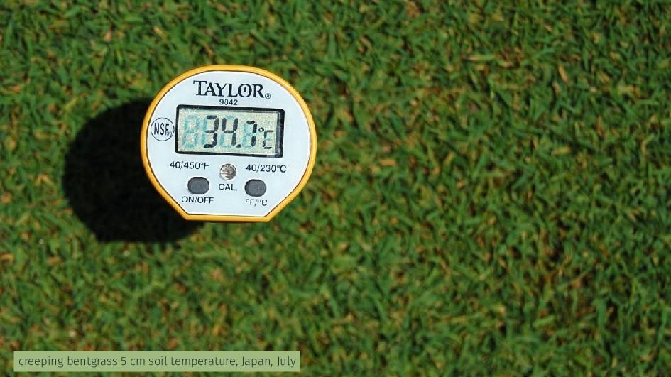 creeping bentgrass 5 cm soil temperature, Japan...