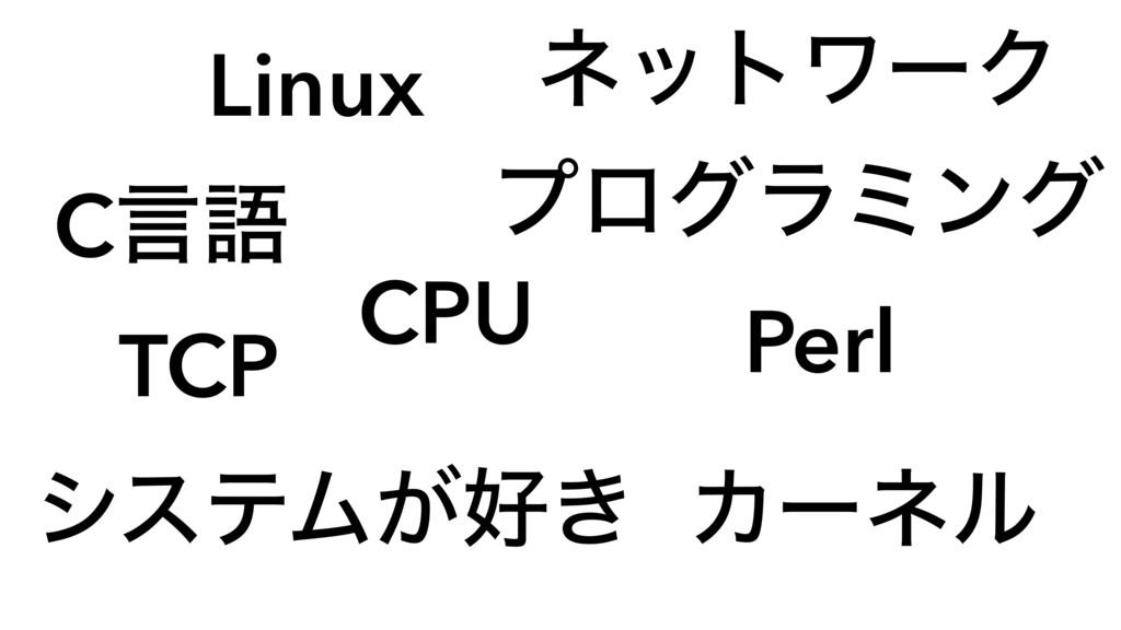 Linux Cݴޠ CPU Perl TCP Χʔωϧ ωοτϫʔΫ ϓϩάϥϛϯά γεςϜ...