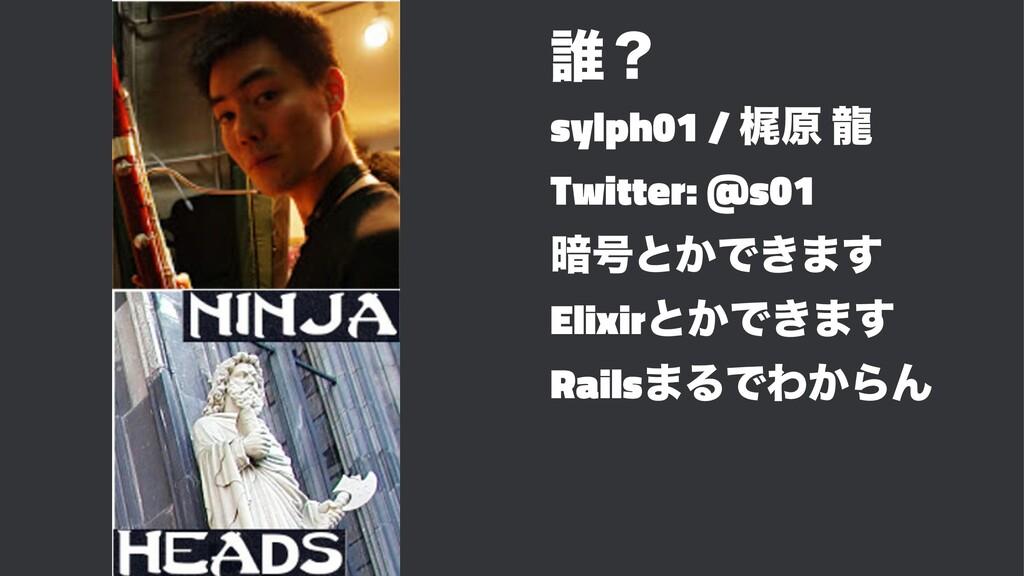 ୭ʁ sylph01 / ֿݪ ཾ Twitter: @s01 ҉߸ͱ͔Ͱ͖·͢ Elixir...