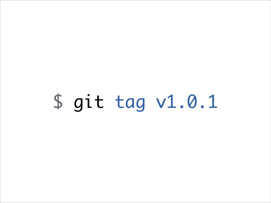 $ git tag v1.0.1