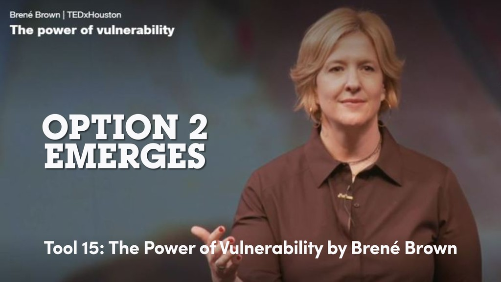 OPTION 2 EMERGES Tool 15: The Power of Vulnerab...