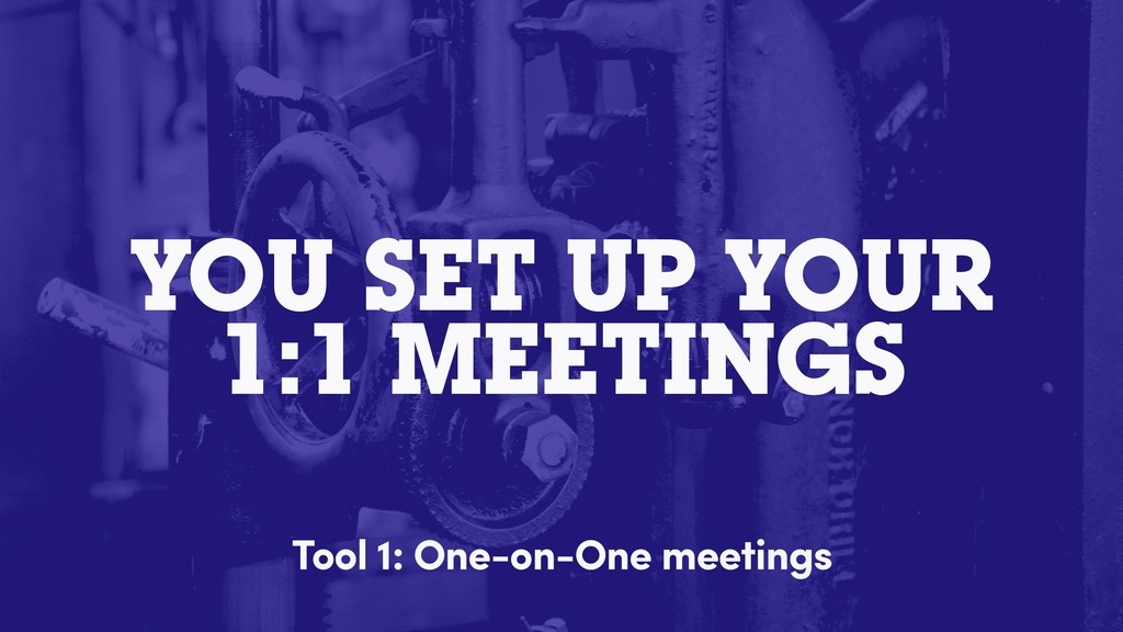 YOU SET UP YOUR 1:1 MEETINGS Tool 1: One-on-One...