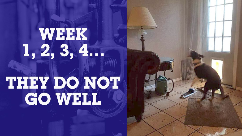 WEEK 1, 2, 3, 4… THEY DO NOT GO WELL