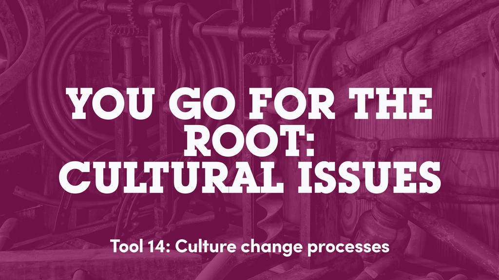 YOU GO FOR THE ROOT: CULTURAL ISSUES Tool 14: C...
