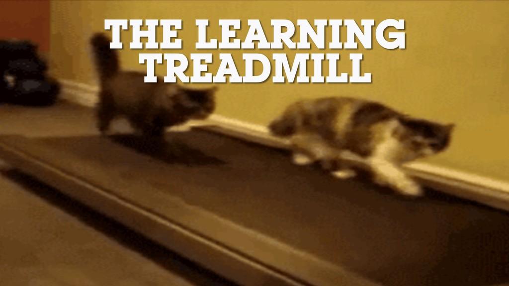 THE LEARNING TREADMILL