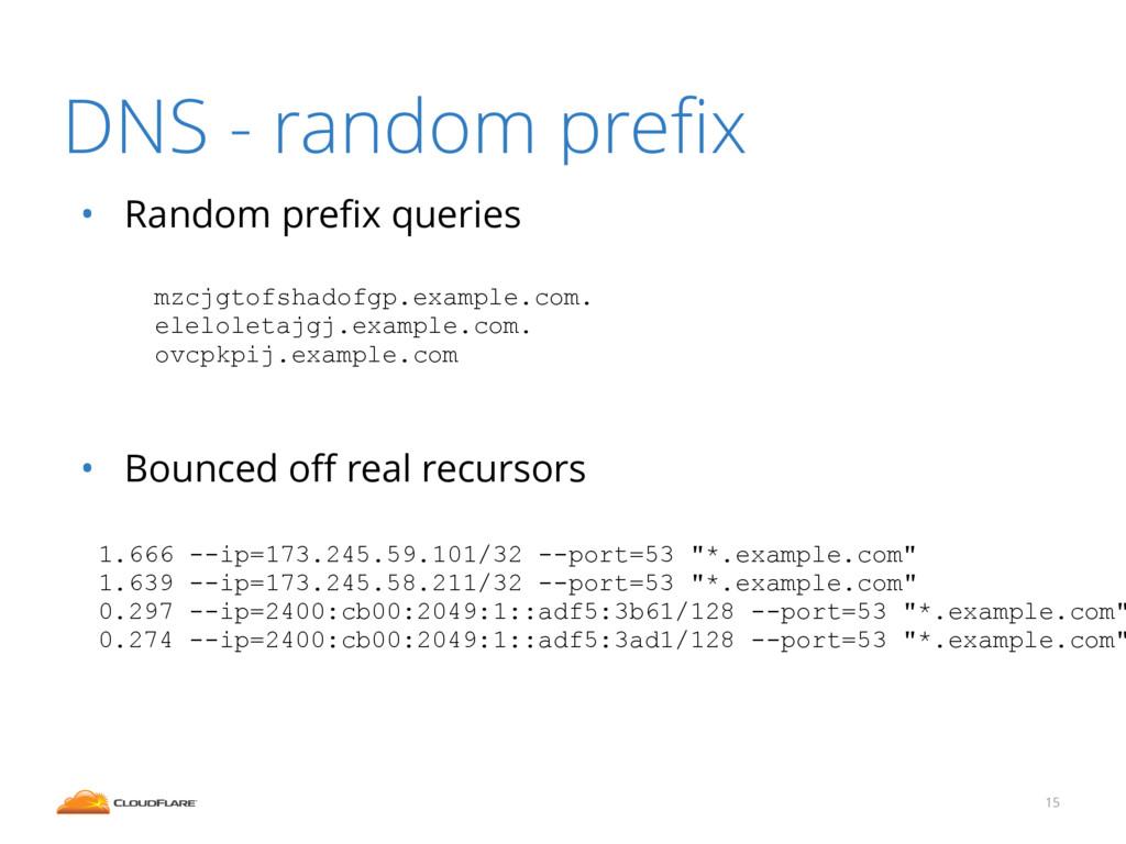 DNS - random prefix 15 ! 1.666 --ip=173.245.59.1...