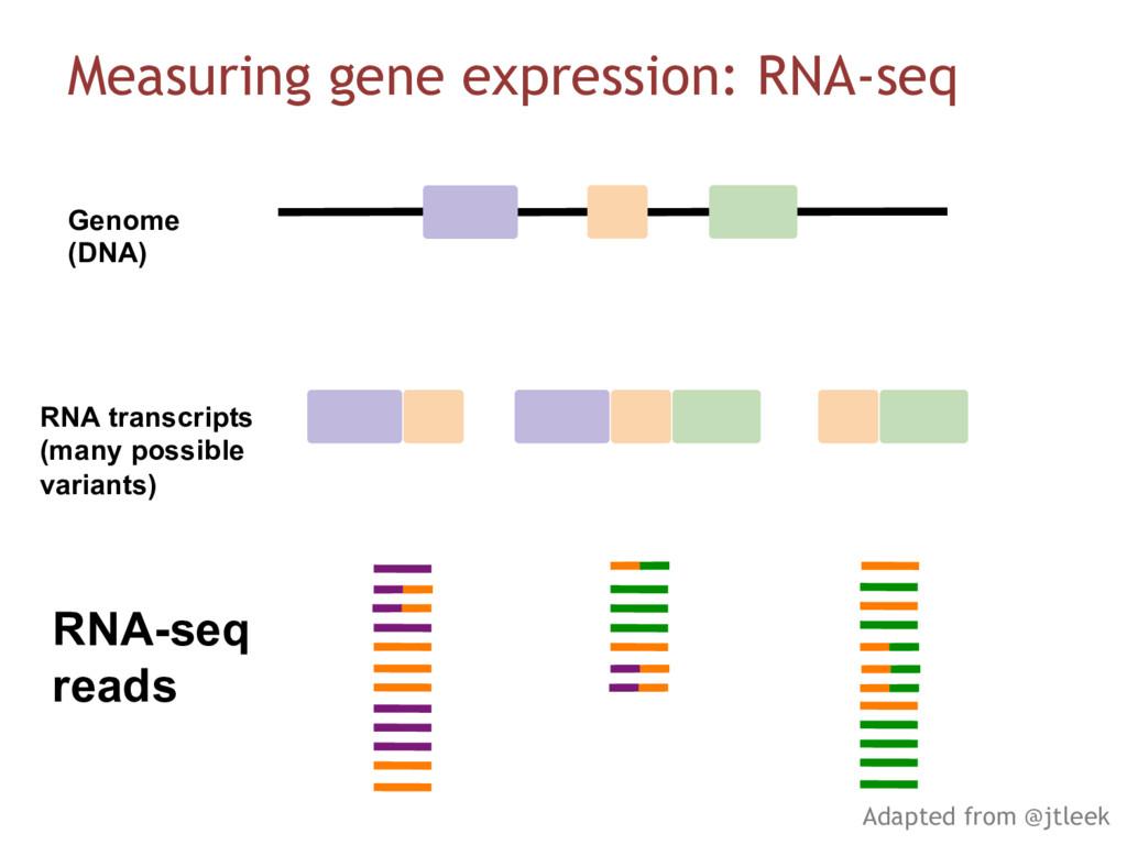 RNA-seq reads Genome (DNA) RNA transcripts (man...