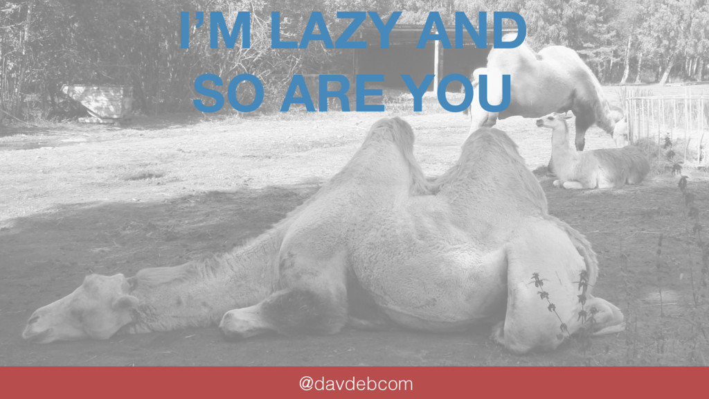 I'M LAZY AND SO ARE YOU @davdebcom by David J