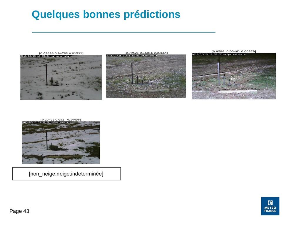 Page 43 Quelques bonnes prédictions [non_neige,...