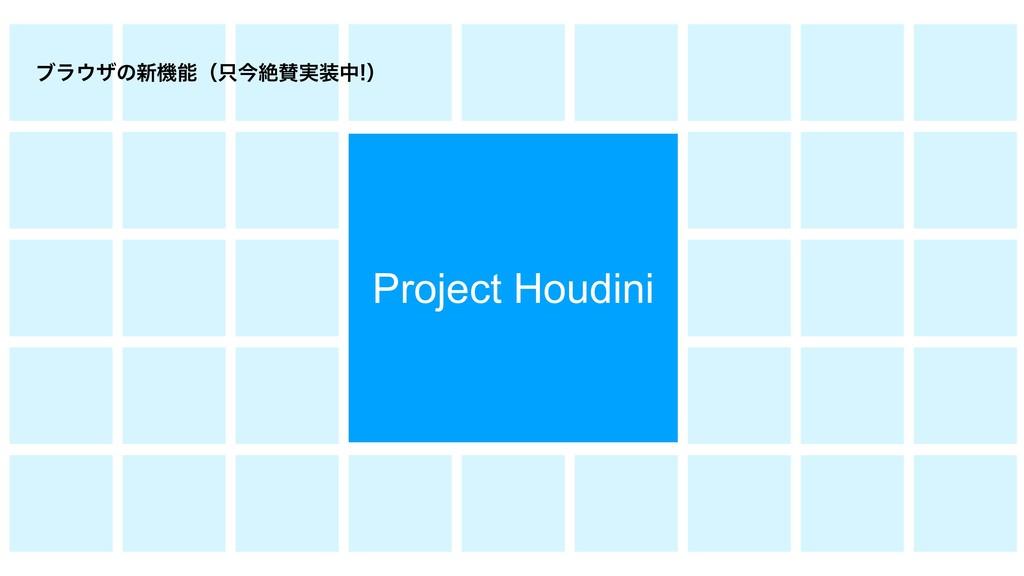 Project Houdini ϒϥβͷ৽ػʢࠓઈ࣮தʣ