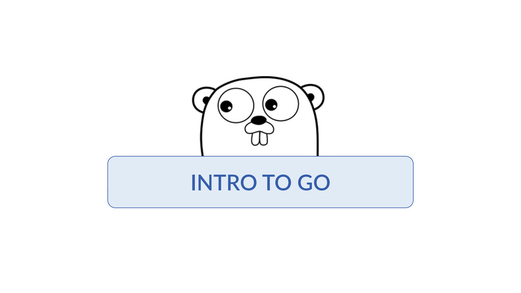 INTRO  TO  GO