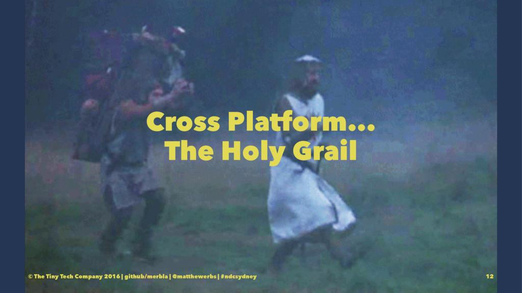 Cross Platform... The Holy Grail © The Tiny Tec...